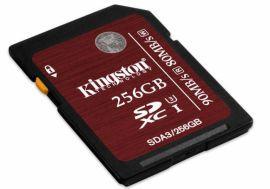 Kingston SDXC 256GB