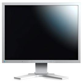 Monitor EIZO FlexScan S2133-GY
