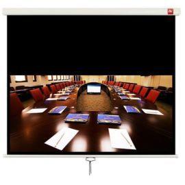 Ekran projekcyjny AVTEK Business 200